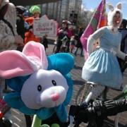 Bunnies on bikes run amok