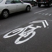 National committee endorses sharrows