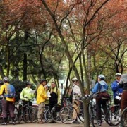 Bicycle Master Plan ride explores northwest