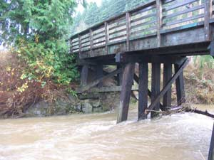Springwater Corridor Bridge closes due to high water