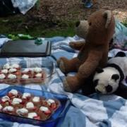 Ride Report: Teddy Bears' Picnic Ride (Photos)