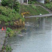 High Water on the Willamette: Photos, updates on bikeway impacts