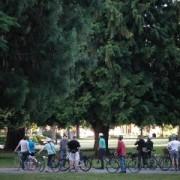 Pedalpalooza Recap: Vancouver Heritage Tree Ride