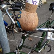 Spotted in Mill Valley: A coconut cup holder