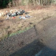 Oregon roads claimed 319 lives in 2011: Bike deaths more than doubled