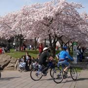 Weekend Open Thread – Share your bike fun