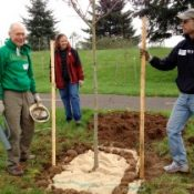 Friends, family plant trees along I-205 path in honor of Gail Achterman