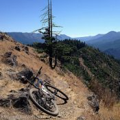 Oakridge is a mountain biker's delight