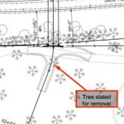 Bridge project that's part of North Portland Greenway raises concerns over tree removal