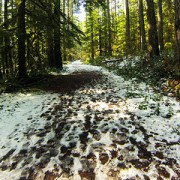 Rhododendron to Sandy Ridge: An off-highway adventure