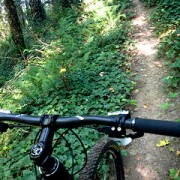 Bike shop donates $15,000 to help build MTB trails in Portland area