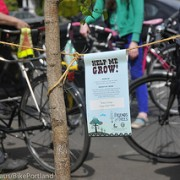 Portland's tree and bike connection goes national