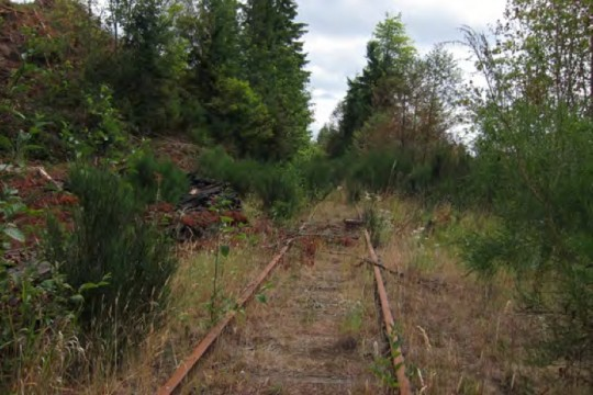 salmon-rail-to-trail-b4