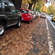 Our annual leaves-in-bike-lanes post