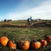 Weekend Event Guide: Parties, Cranksgiving, tree plantings, and more