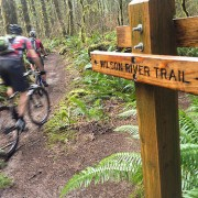 The Ride: Mountain biking on the Wilson River Trail