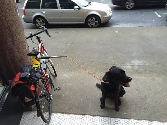 stajOso Bike to work