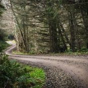 The Ride: Scappoose to the Banks-Vernonia Trail via logging roads