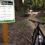 Citing environmental concerns, City says no to mountain biking at River View Natural Area