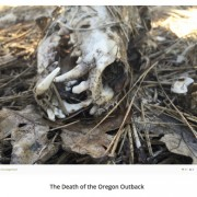 The Oregon Outback is dead, long live the Oregon Outback!