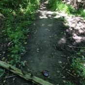 Trail sabotage seen at River View Natural Area – UPDATED with photos