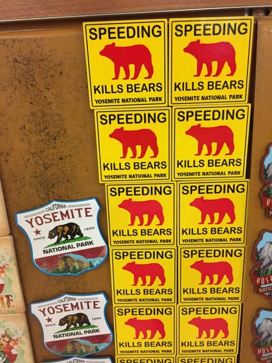 speedingkillsbears-3