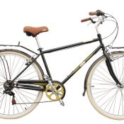 Two new bikes stolen from outside Southwest Bicycle