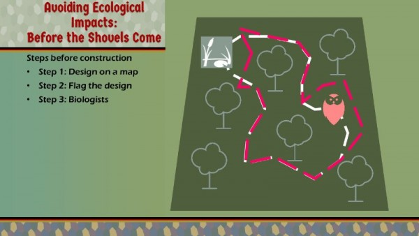 KitN-Ecological