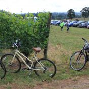Winding roads, wine and an all-women ride: Gal by Bike says Yes, Please