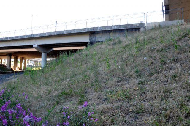 gateway hillside passage