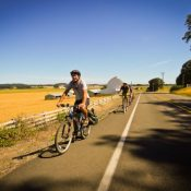 BikeLoud, Livable Streets Action will ride to Salem July 16 for transportation reform