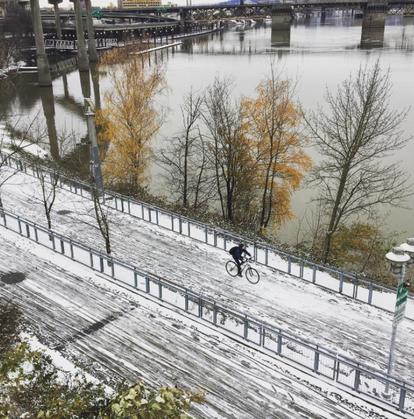 snow-esplanadepath