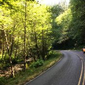 The Ride: To the Oregon coast and back via Nestucca River Road