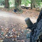 Two reports of tripwires this week including one at Gateway Green bike park