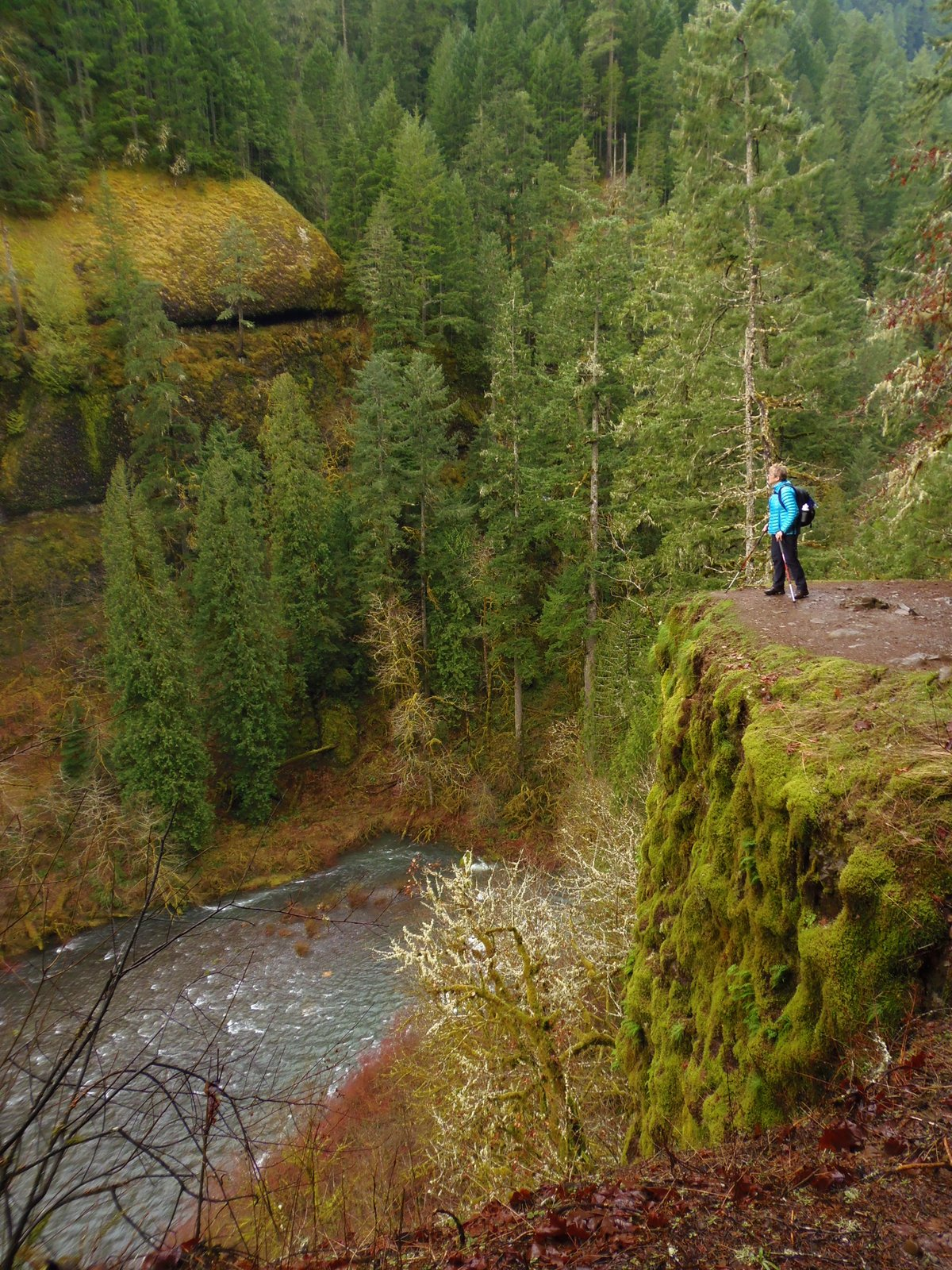 Reflections On The Eagle Creek Fire From Gorge Getaways Author Mainly Serve As A Getaway But Would Appreciate More Experienced Laura Foster