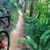 Four-month closure of Stub Stewart trails starts November 1st - UPDATE