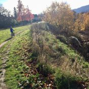 Guest post: Where we stand on Portland's Off-road Cycling Master Plan