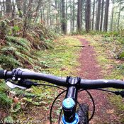 Off-road Cycling Master Plan: Another dead end or a new beginning?