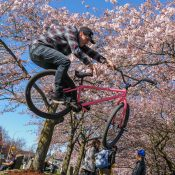 A community blooms around fixed-gear freestyle riding