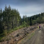 Gravel 'Epic' lures riders to Oregon Coast Range and delivers on its promises