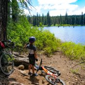 Escape from Portland with this easy loop on quiet forest roads above Trout Lake