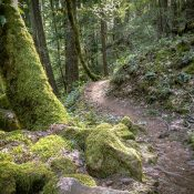 Falls Creek Hinterland Ride (OMTM)