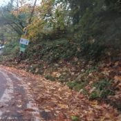 Road rage incident caused by unsafe cycling conditions on SW Terwilliger