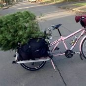 Family biking: Our annual tree-by-bike tradition