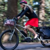 Review: Surly's 'Big Easy' smooths out family biking and cargo-hauling
