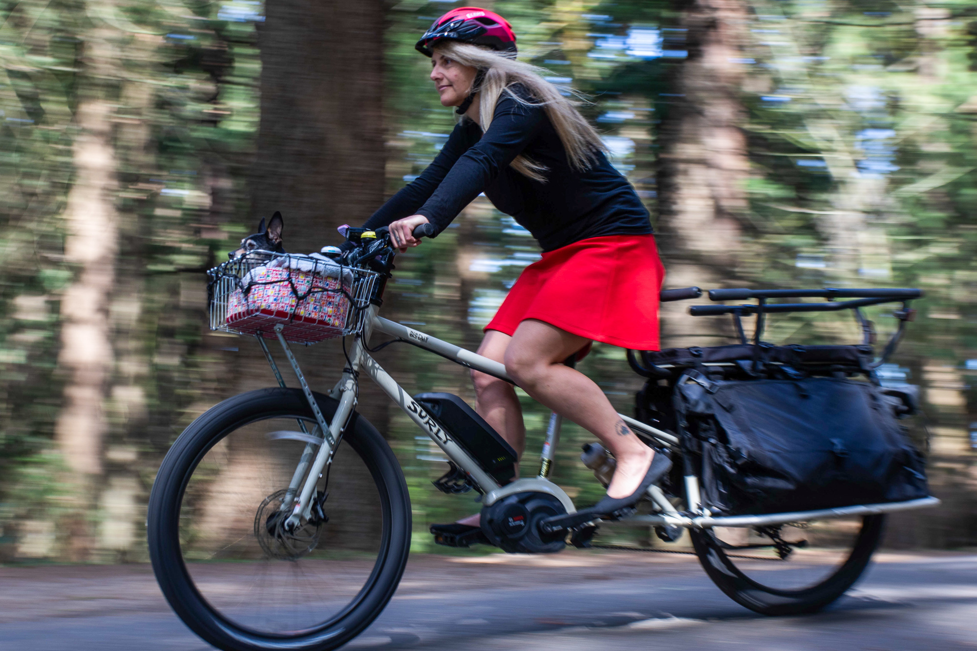 25b48bc5fbd Review: Surly's 'Big Easy' smooths out family biking and cargo-hauling