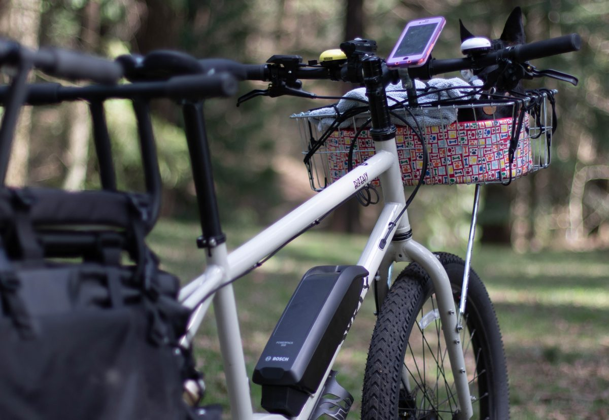 Review: Surly's 'Big Easy' smooths out family biking and cargo-hauling -  BikePortland org
