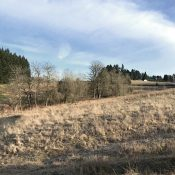 Luscher Farm trail plan would create off-road riding opportunities in Lake Oswego