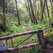 Weekend Event Guide: Yamhill Fondo, Forest Park romp, Kidical Mass, and more