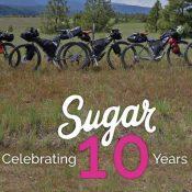 Sugar Wheel Works 10th Birthday Party